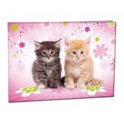 Desky na číslice Cats