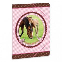 Složka na sešity My Horse koně A5