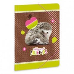 Složka na sešity Hedgehog ježek A4
